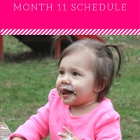 11 Month: Feeding Schedule