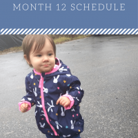 12 Month: Feeding Schedule