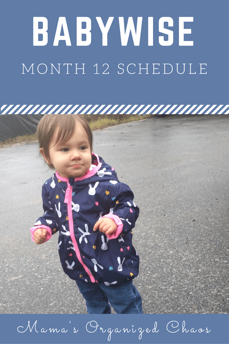 Babywise schedule month 12: for baby around 12 months of age. On this page you'll find schedules, information on naps, nighttime sleep, and more!