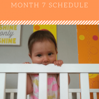 7 Month: Feeding SCHEDULE