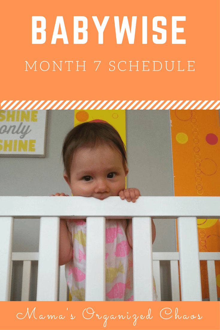 Babywise schedule month 7: for baby around 7 months of age. On this page you'll find schedules, information on naps, nighttime sleep, and more!