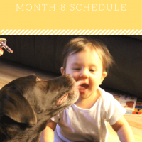 8 Month: Feeding SCHEDULE