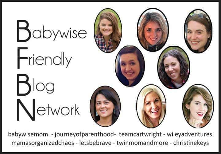 Babywise Friendly Blog Network Bloggers and information