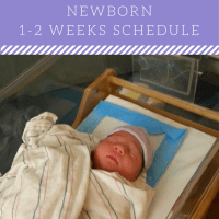 NEWBORN (1-2 WEEKS) SCHEDULE
