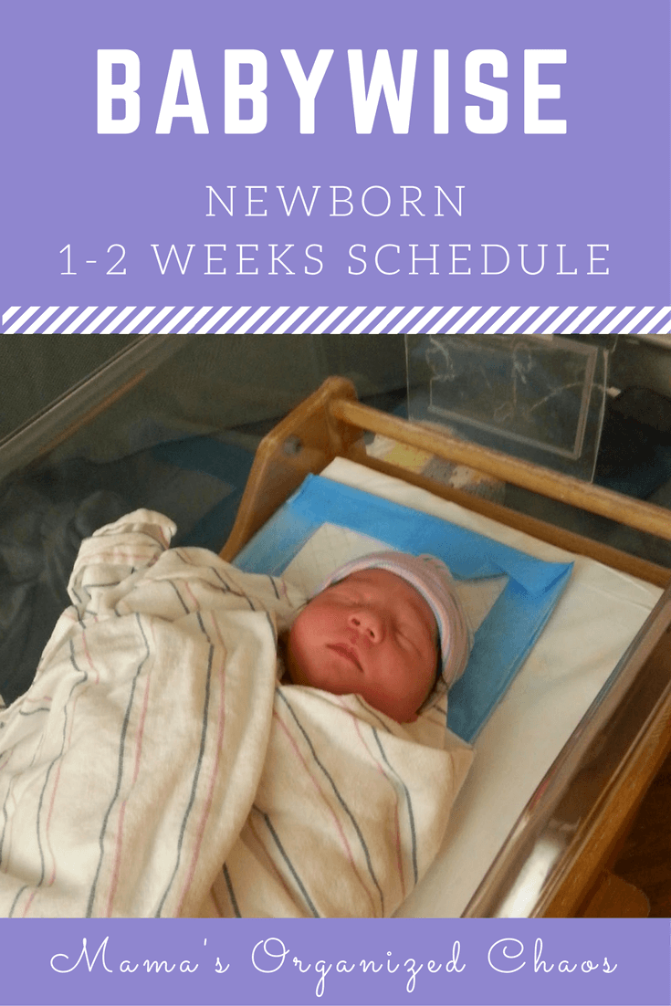 Newborn lying in bassinet at the hospital. Newborn 1-2 weeks schedule information for Babywise.