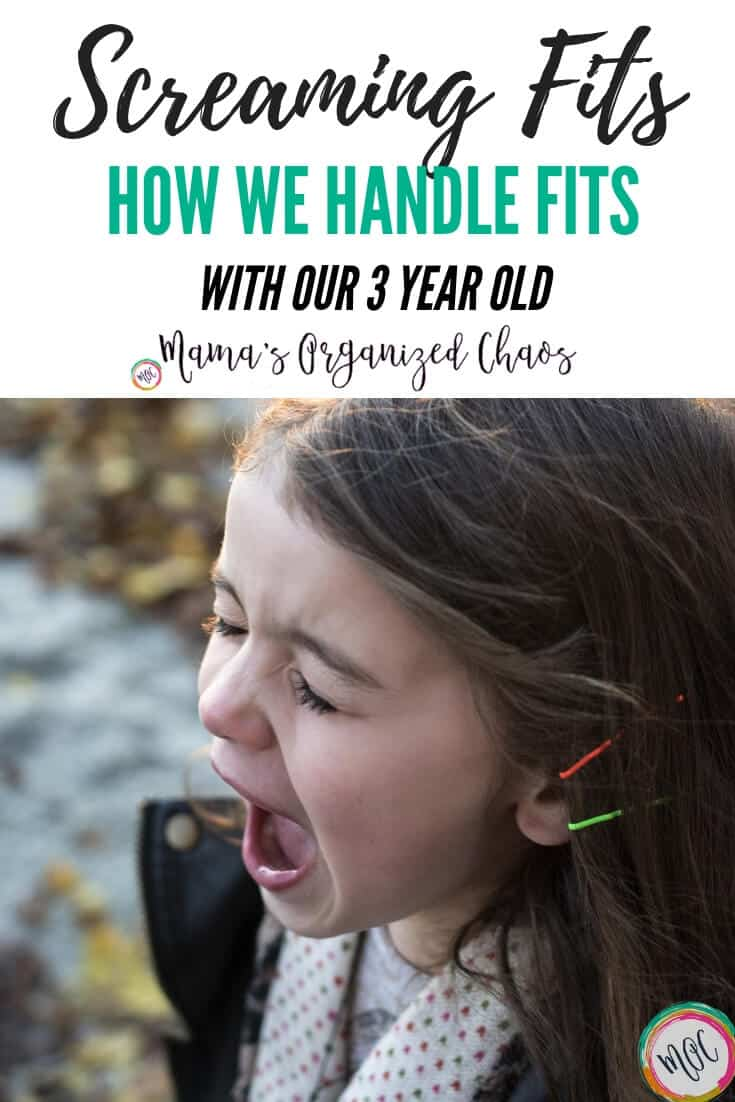 How We Handle Screaming Fits With Our 3 Year Old
