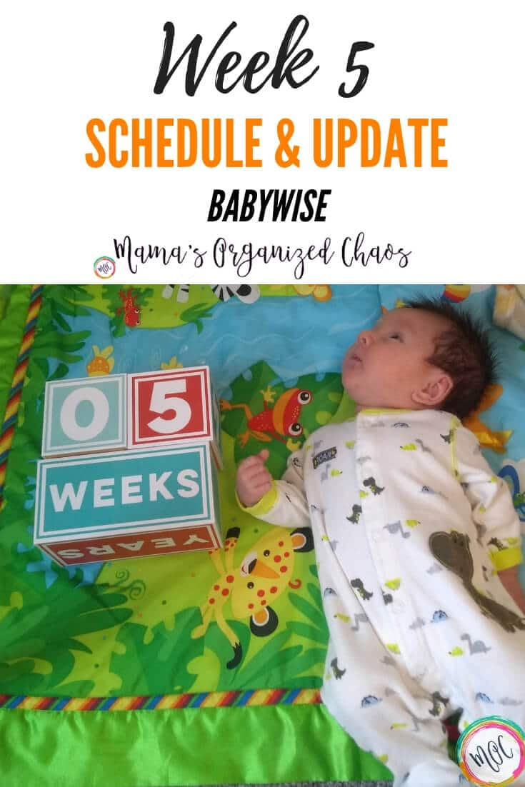 babywise 5 week schedule and update