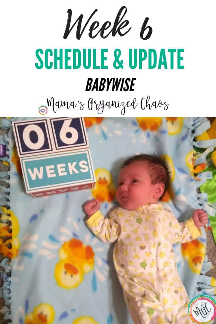 babywise 6 weeks schedule and update (1)