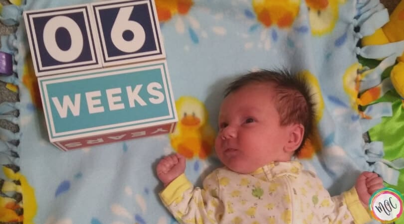 babywise 6 weeks schedule and update