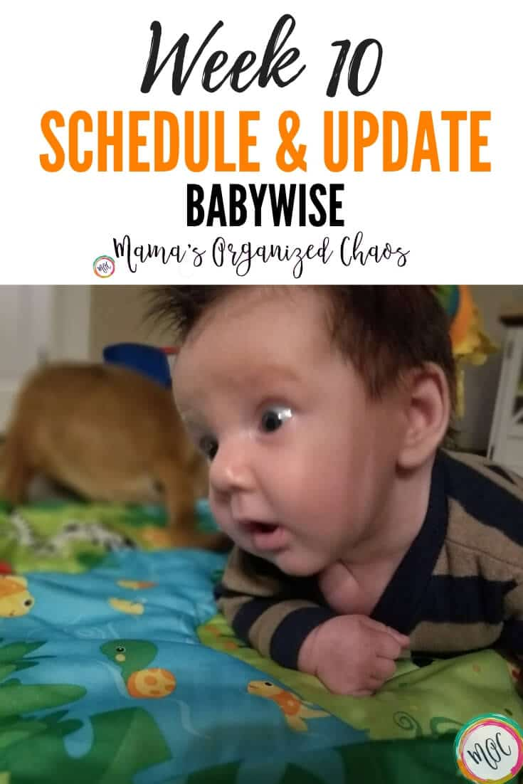week 10 babywise schedule and update