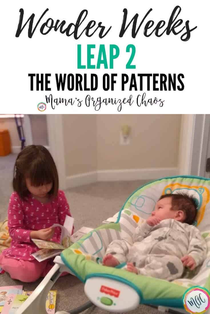 wonder weeks leap 2