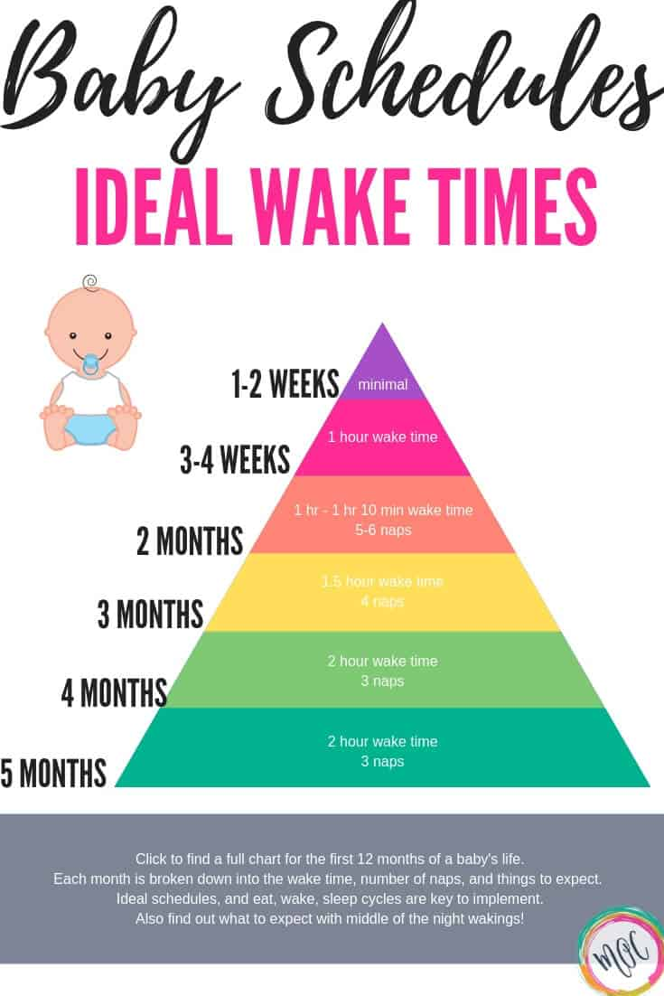 ideal wake times