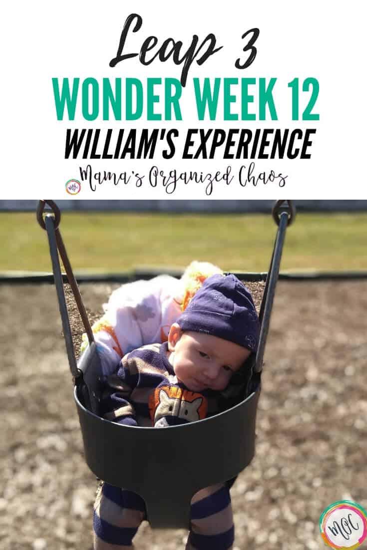 leap 3 wonder week 12