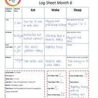 Printable Parenting Tools: Newborn to 6 Month Schedule