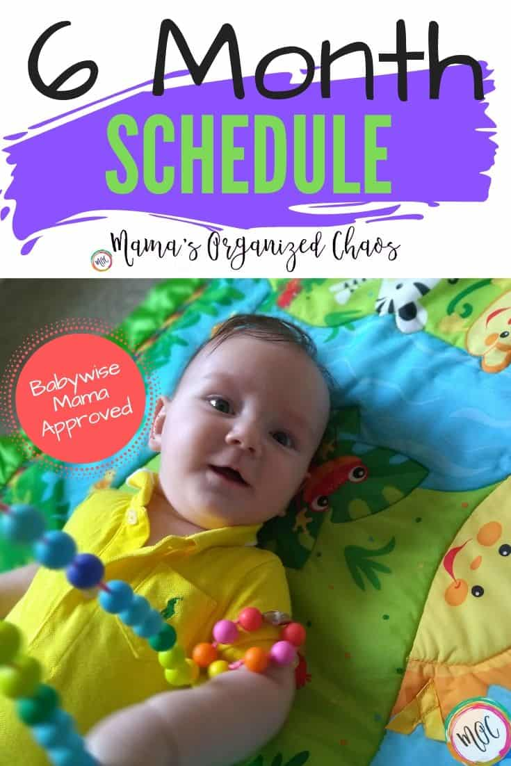6 month old babywise schedule