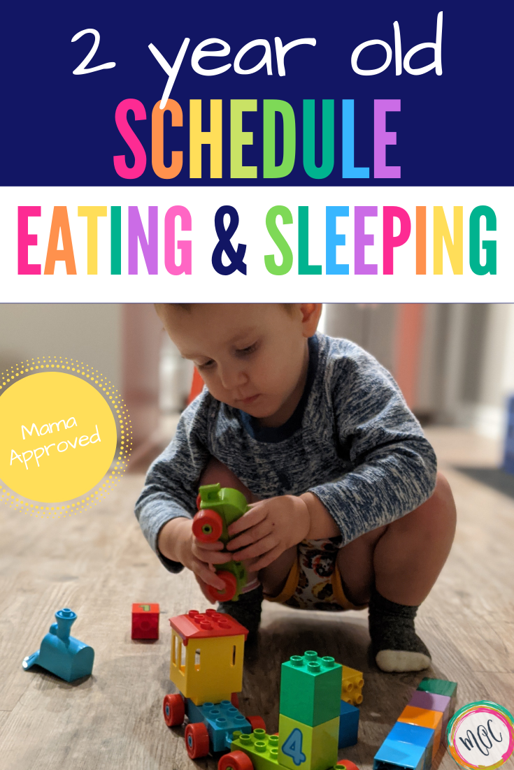 2 year old schedule